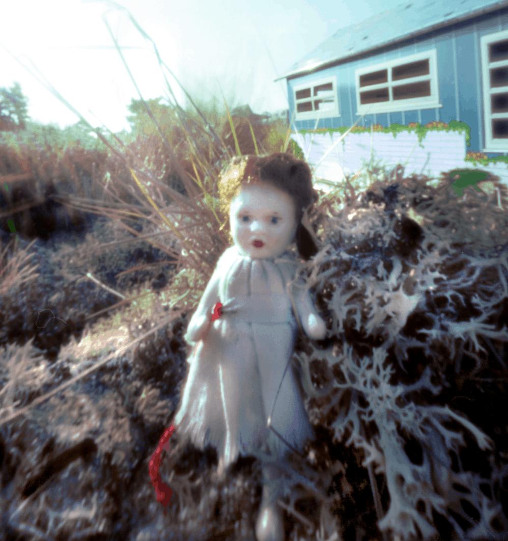 Detail of Dollhouse Beach photograph by Donna Bassin